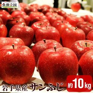 【ふるさと納税】JAいわて中央の美味しいりんご サンふじ10kg