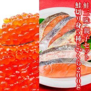 【ふるさと納税】三陸鮭三昧 親子セット 鮭切り身5種10パックとイクラ200g