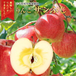 【ふるさと納税】中野果樹園のサンふじ5kg(16〜20個入り)