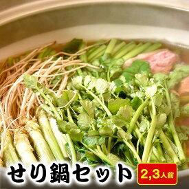 【ふるさと納税】【お届け日時指定】せり生産量日本一の名取市から 地元農家直送のせりを使った「せり鍋セット」2、3人前