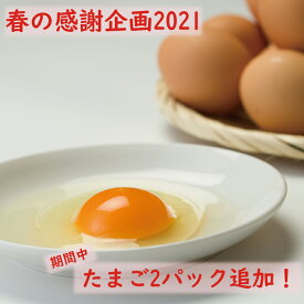 【ふるさと納税】【春の感謝企画2021】40P5305 秋田比内地鶏たまご60個入り