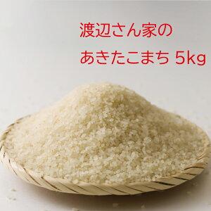 【ふるさと納税】30P9002【令和2年産】渡辺さん家のあきたこまち5kg