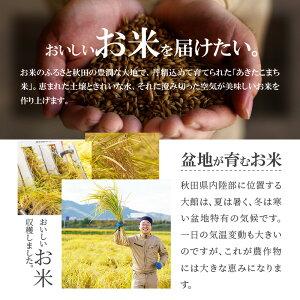 【ふるさと納税】60P9204【令和2年産新米】秋田県産あきたこまち(無洗米)10kg