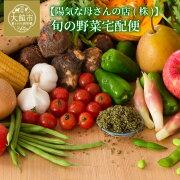 【ふるさと納税】50P3212旬の野菜宅配便