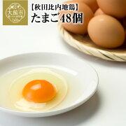 【ふるさと納税】40P5303秋田比内地鶏たまご48個