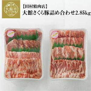 【ふるさと納税】120P2152 大館さくら豚詰め合わせ2.85kg