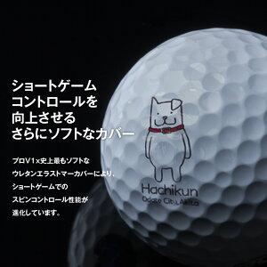 【ふるさと納税】115P7812【はちくんゴルフボール】タイトリストPROV1X2021年モデル