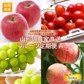 【ふるさと納税】農家直送フルーツ定期A 4回 F2Y-1335