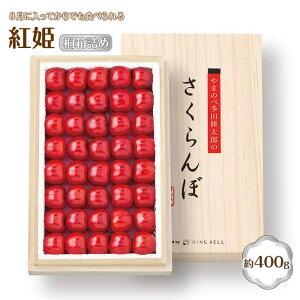 【ふるさと納税】《先行予約》山形の極み 山形県産さくらんぼ 紅姫400g 桐箱詰 特秀 2L・3L F2Y-1479