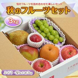 【ふるさと納税】秋のフルーツセット3kg F2Y-2135