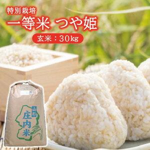 【ふるさと納税】一等米 特別栽培米 つや姫 玄米 30kg×1袋 令和2年産米 山形県酒田産 米