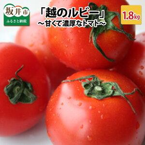 【ふるさと納税】「越のルビー」 1.8kg 〜甘くて濃厚なトマトをお届けします〜【6月中旬〜6月下旬,9月中旬〜9月下旬】