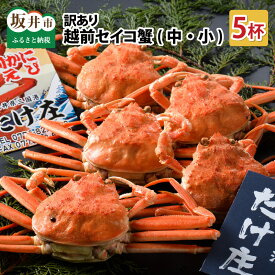 【ふるさと納税】訳あり かに【先行予約】訳あり越前セイコ蟹(中・小) 5杯 本場のぷちぷち体験 カニ