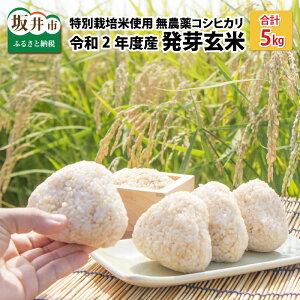 【ふるさと納税】≪発芽玄米≫ 無農薬コシヒカリ「特選」令和2年度産 特別栽培米使用 5kg