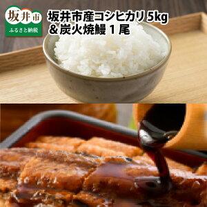 【ふるさと納税】福井県 坂井市産コシヒカリ 5kg + 炭火焼鰻 1尾