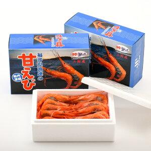 【ふるさと納税】三国港から産地直送!本場の濃厚な「甘えび」約1.1kg