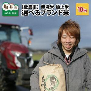 【ふるさと納税】【低農薬】極上米10kg無洗米『こしひかり』『ハナエチゼン』『ミルキークイーン』『あきさかり』健康