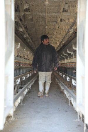 【ふるさと納税】すき焼き鍋鶏高級食材セット甲斐路軍鶏ムネ挽き肉送料無料