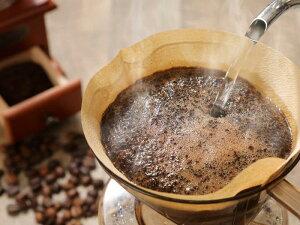 【ふるさと納税】コーヒー最高級コーヒー豆珈琲ブルーマウンテンコーヒー豆100g当日焙煎送料無料