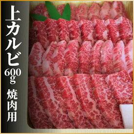 【ふるさと納税】飛騨牛 上カルビ 焼肉用 600g 牛肉 和牛 肉 お中元 バーベキューに[Q113]