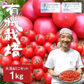 【ふるさと納税】《先行予約》《期間・数量限定》トマトとミニトマトのセット 有機JAS認定 合計1kg[A0091]
