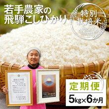 【ふるさと納税】《事前予約制》若手農家のこだわりのお米特別栽培米コシヒカリ8kg《発送は2019年1月以降》[B0048]