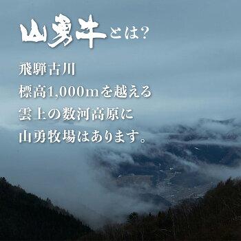 【0060-0045】熟成飛騨牛「山勇牛」ランプブロック