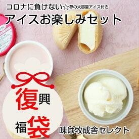 【ふるさと納税】<牧成舎>コロナに負けない!飛騨のミルクの旨味たっぷりアイスクリーム福袋セット[Q123]