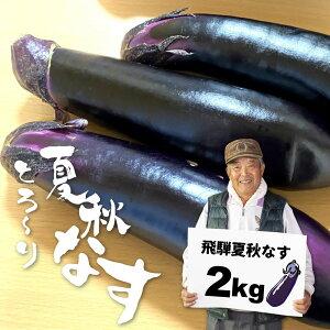 【ふるさと納税】飛騨 夏秋なす 2kg (8-10本)茄子 ナス 大なす 産地直送 夏野菜 野菜 [Q792]