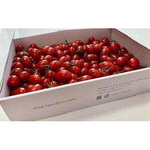【ふるさと納税】HOSONOFARMプレミアムミニトマト「スピカ」1kg 【野菜・ミニトマト】
