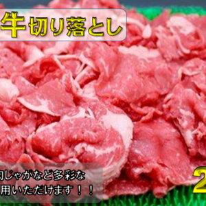 【ふるさと納税】飛騨牛切り落とし2kg(1kg×2) 【モモ・お肉・牛肉・バラ(カルビ)・牛肉】 お届け:※12月16日〜1月10日は出荷出来ませんのでご注意下さい。