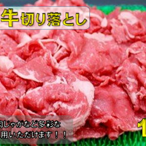【ふるさと納税】飛騨牛切り落とし1kg 【モモ・お肉・牛肉・バラ(カルビ)・お肉・牛肉】 お届け:※12月16日〜1月10日は出荷出来ませんのでご注意下さい。