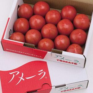 【ふるさと納税】a10-371 アメーラトマト