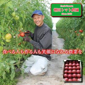 【ふるさと納税】a10-498 トマト 詰合せ 約4Kg 農園 直送 新鮮 農家