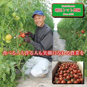【ふるさと納税】a10-510 ミニトマト 詰合せ 約2Kg 農園 直送 新鮮