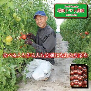 【ふるさと納税】a10-511 トマト ミニトマト 詰合せ 約3Kg 直送 セット