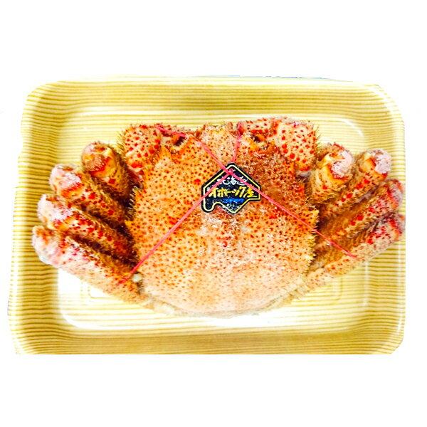 【ふるさと納税】a15-038 カネト平田 特大ボイル毛がに約800g