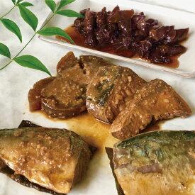 【ふるさと納税】a15-425 訳あり サバ イカ 煮 魚 鰤 ブリ 鯖 詰合せ 10袋