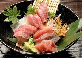 【ふるさと納税】a20-064 焼津・鮪頭肉・たたき身セット 合計約1520g
