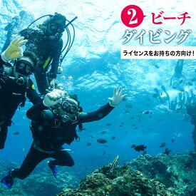 【ふるさと納税】絶景ビーチで楽しむ2ビーチガイド付きダイビング(黄金崎公園)