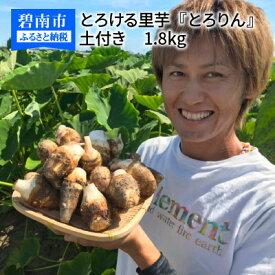 【ふるさと納税】【お試し】とろける里芋『とろりん』 土付き 1.8kg H097-001