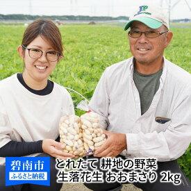 【ふるさと納税】生落花生 おおまさり 2kg とれたて 耕地の美味しい野菜シリーズ第1弾 H132-001