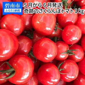 【ふるさと納税】新食感!奇跡のさくらんぼトマト 1kg 5月〜6月発送 H004-052