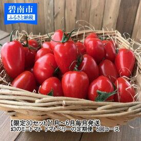 【ふるさと納税】1月~6月毎月発送 幻のミニトマト トマトベリーの定期便 6回コース H004-040