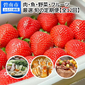 【ふるさと納税】厳選!肉・魚・野菜・フルーツすべて詰まった旬の定期便(全12回お届け) H028-023