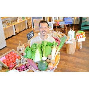 【ふるさと納税】忍びの国の野菜セット(12品以上) 【野菜・セット・詰合せ】