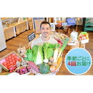 【ふるさと納税】忍びの国の野菜セット(12品以上)季節毎に4回お届け 【定期便・野菜・セット・やさい・詰合せ】