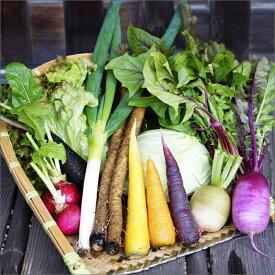 【ふるさと納税】<オーガニック野菜&燻製5種セット>自家農場の有機野菜にこだわったフレンチシェフ特製