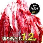 【ふるさと納税】氷温(R)熟成牛切り落とし1.2kg