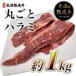 【ふるさと納税】氷温(R)熟成牛丸ごとハラミ2本(合計約1kg)